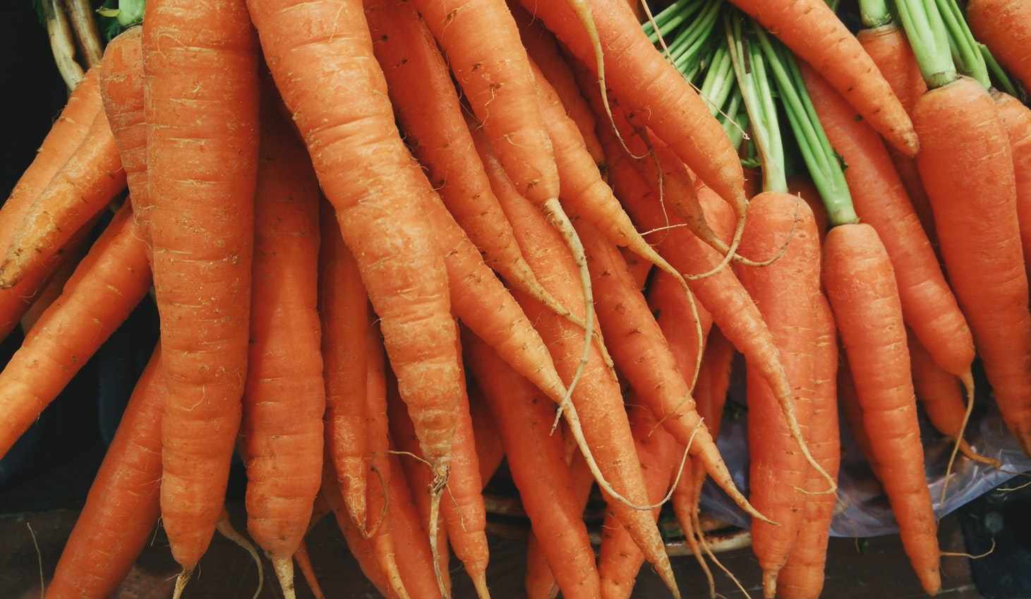 International Carrot Day!